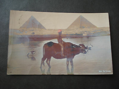 Cp Egypt Egypte  Cairo The Pyramids  Sent From Egypt 1907