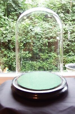 Antique Victorian Display Glass Dome and Base