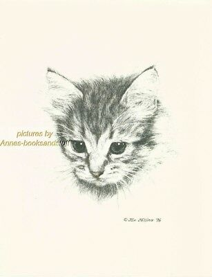 #112 SHORT HAIR TABBY KITTEN * cat art print * pen & ink drawing by Jan Jellins
