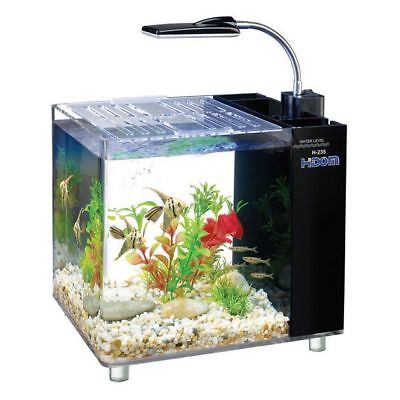 15 Litre Mini Aquarium / Fish Tank with Filter and LED Lighting