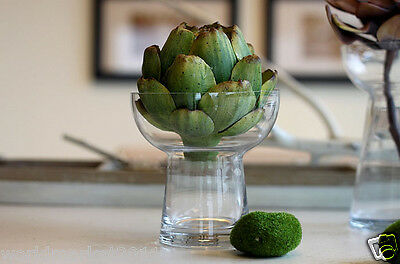 Nordic Style Modern Simple Delicate Glass Vase Green plant Craft Decoration Gift