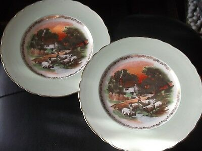 2 X Vintage Royal Staffordshire Aj Wilkinson Green Lustre Plates Bold Sheep 10""