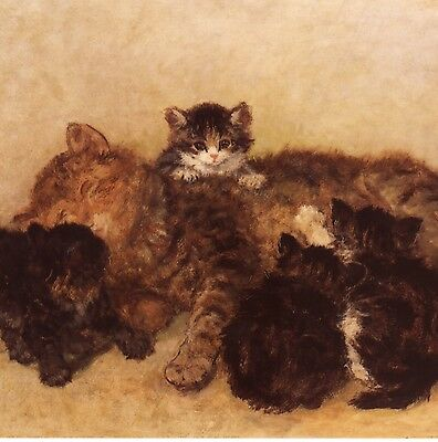 Henriette Ronner-Knip...mother Cat Enjoys Her Kittens,blank Greeting,note Card