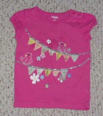 """Super Sweet"" Pink Gymboree S/S Top w/ Birds & Flags, Sugar Reef, Size 2T, GUC"