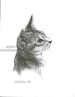 # 391 ABYSINIAN CAT PORTRAIT * cat art print * pen & ink drawing by Jan Jellins