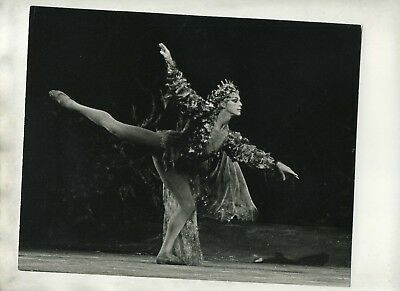 Anthony Dowell- Male Ballet Dancer Performing - Original Stamped 8 X 10 Photo