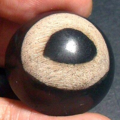 56ct Brown Black 'GREEK EVIL EYE' Picture AGATE ~100% Natural Wood Fossil~