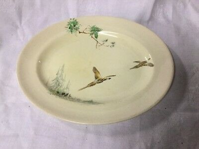 Royal Doulton The Coppice Oval Plate