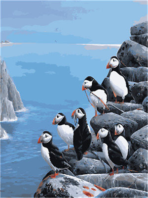 Paint By Number Kit DIY Penguin Coast Cliff Canvas Painting Wall Home Decor Gift