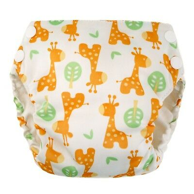 Blueberry Basix All in One Cloth Diapers - Medium
