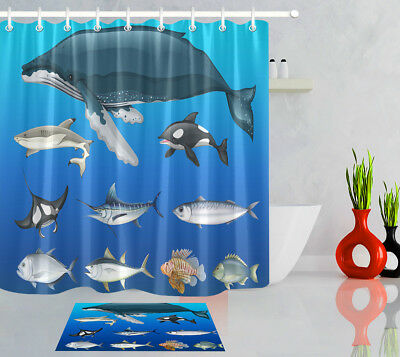 Ocean Whale Dolphin Shower Curtain Bathroom Waterproof Fabric &12hooks 72*72inch