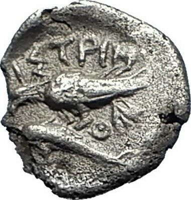 ISTROS in Thrace Gemini Dioscuri HEMIOBOL Ancient SILVER Greek Coin EAGLE i70613