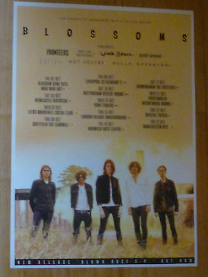 Blossoms UK Tour 2015 concert gig poster Fronteers, Viola Beach, Cupids
