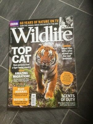 BBC Wildlife magazine September 2017   Top Cat New