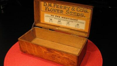 Stunning Antique D.m. Ferry & Co Flower Seeds Display Box Finger Joints - Nice !