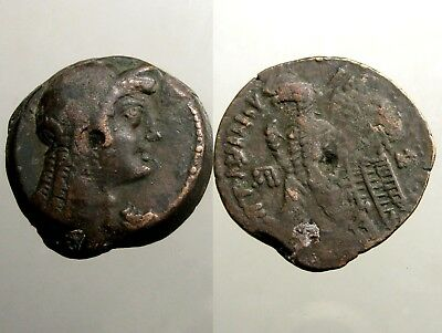 Ptolemy VI AE27 Diobol______PORTRAIT OF CLEOPATRA I AS ISIS______Ancient Egypt
