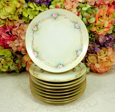 9 Beautiful Limoges Porcelain Plates Hand Painted Roses Gold Trim