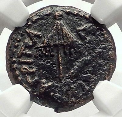 Herod AGRIPPA I JERUSALEM Biblical Claudius Time Ancient Greek Coin NGC i70885
