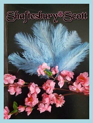 """FEATHERS OSTRICH X 5 pcs PINK BLUSH  Millinery and Crafts 6""""- 8""""  15 -20 cm"""