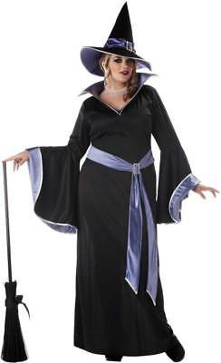 Adult Women Incantasia, The Glamour Witch Costume Plus Size