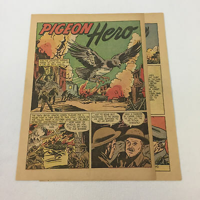 1947 two page cartoon story ~ PIGEON HERO~ US Army GI Joe ~ WWII 1943 Italy