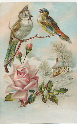 C8664  Victorian Trade Card Lions Coffee  Birds  /  Rose