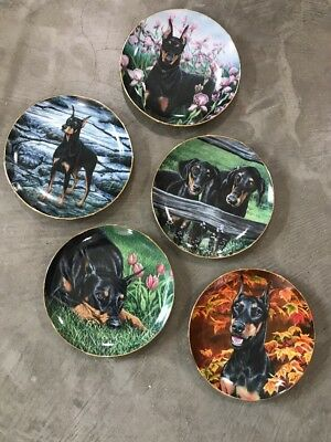 Danbury Mint Doberman Pinschers Collectors Plates Compete Set of 5