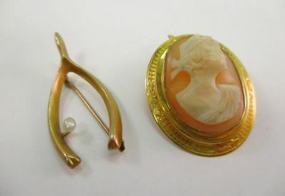 Lot of Two 10K Yellow Gold Victorian Shell Cameo & Seed Pearl Scatter Pins
