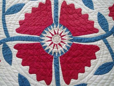 EARLY Stunning 1854 SpringCreek VA Antique Whig Rose Star Doll or Table QUILT