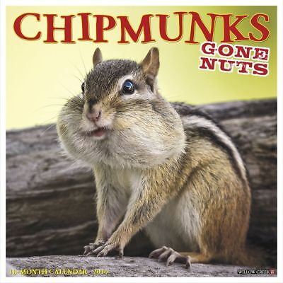 Chipmunks Gone Nuts Wall Calendar, More Animals by Willow Creek Press