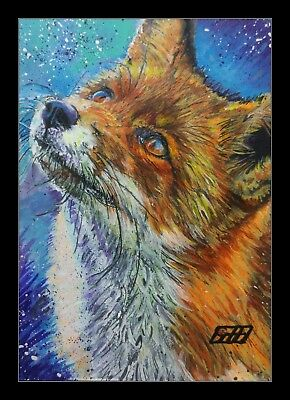 Red Fox acrylic miniature painting ACEO By Gavin Hunt. Orig painted Sketch card.
