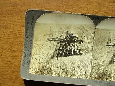 EARLY 1900's MANY HORSES PULLING A Thresher,Reaper FARM PHOTOGRAPH STEREOVEW!