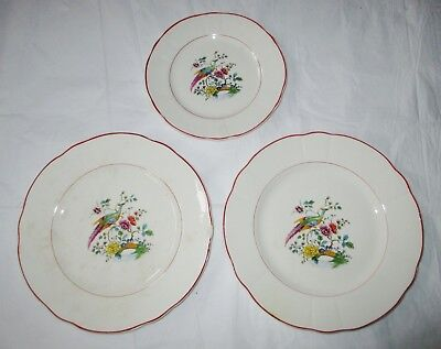 """Knowles Taylor Knowles KT&K IVORY, Two 9"""" Plates, 1 Salad Plate Exotic Bird 1926"""