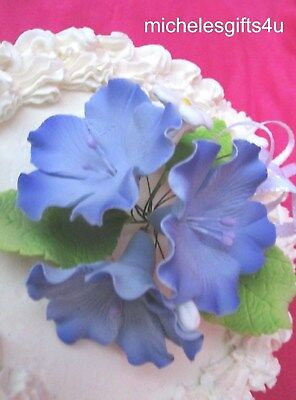 Gum Paste Sugar Large Violet Blossoms & White Flowers Leaves & Ribbon