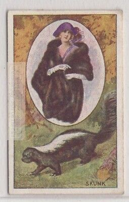 Skunk Fur Pelt Trapping Hunting  1920s Trade  Ad Card