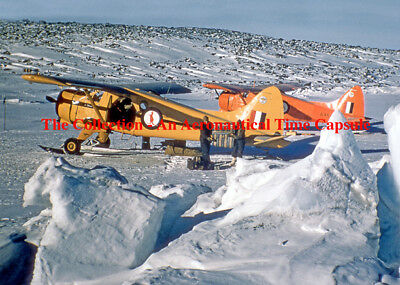 RAAF Antarctic Flight Beavers A4 print