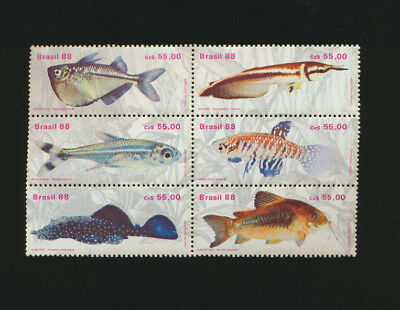 FISH Brazil Block of 6 #2157 Mint Never Hinged Set Freshwater Fish Issued 1988
