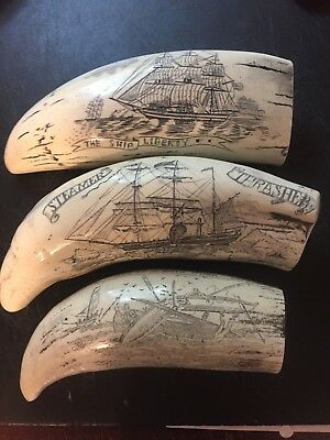 Set Of Three Scrimshaw Reproduction Whale Teeth Limited Time Listing !!
