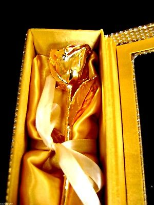 "MOTHER'S DAY GIFT 24K Gold Dipped 11"" Real Rose in Gold Egyptian Casket Design"