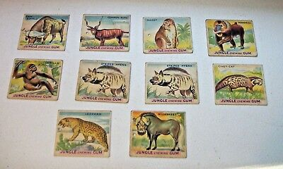 Set of 10 Jungle Chewing Gum Cards #s 5, 7, 8, 10, 12,18, 19, 21 (2) and 23