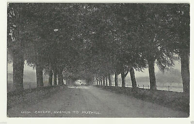 Vintage Postcard - Crieff, Avenue To Muthill - Photochrom - Unposted - C0020