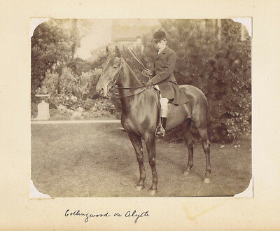 HUNTING Victorian Huntsman on Horse - Antique Albumen Photograph c1890