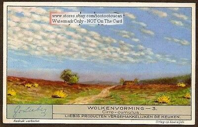 Cirro-Cumulus Clouds Weather Meteorology 1920s Trade Ad Card
