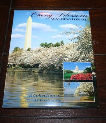 Cherry Blossoms - Washington D.C. - A Collection of 12 Postcards - New