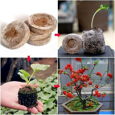 10pcs Jiffy Peat Pellet Seed Starting Plug Seedling Soil Block POE Garden Flower