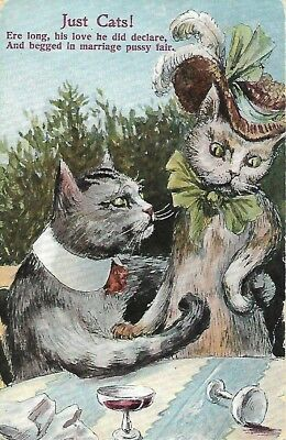 Antique Post Card Just Cats Characters