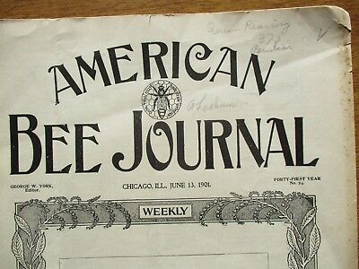 1901 OLDEST Bee Honey Harvesting,American Journal,ADVERTISING,Magazine