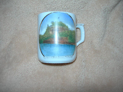 Starved Rock - Illinois State Park Souvenir China Tea Cup circa 1920