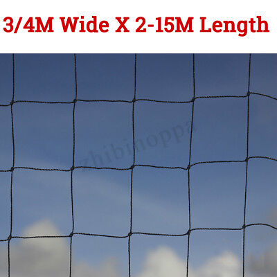 3/4M WIDE Garden Anti Bird Netting Heavy Duty Net Strong Pigeon Chicken 50mm /2""