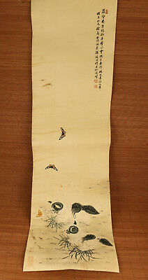 nice Chinese famous Handwork hand painting Cat old art Scrolls collectible